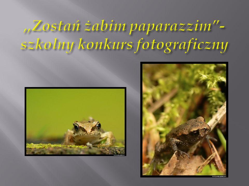 ,,Zostań żabim paparazzim - szkolny konkurs fotograficzny