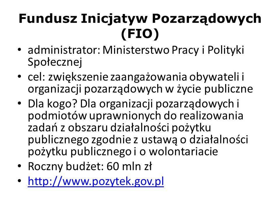 Fundusz Inicjatyw Pozarządowych (FIO)