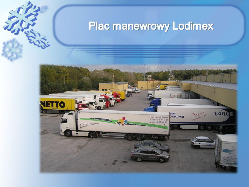 Plac manewrowy Lodimex