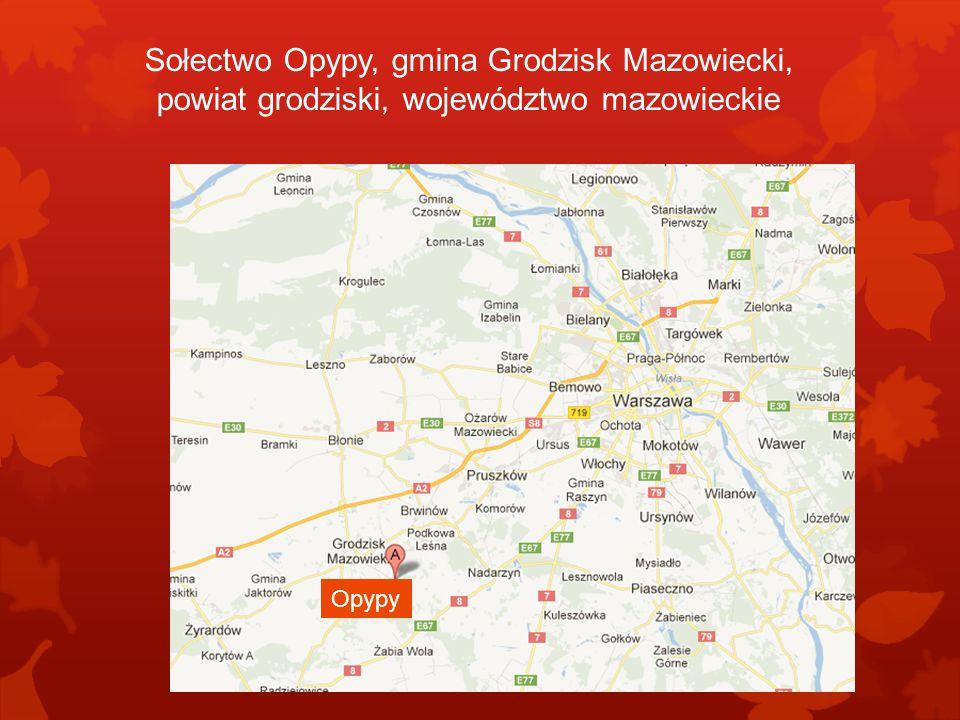 Sołectwo Opypy, gmina Grodzisk Mazowiecki, powiat grodziski, województwo mazowieckie