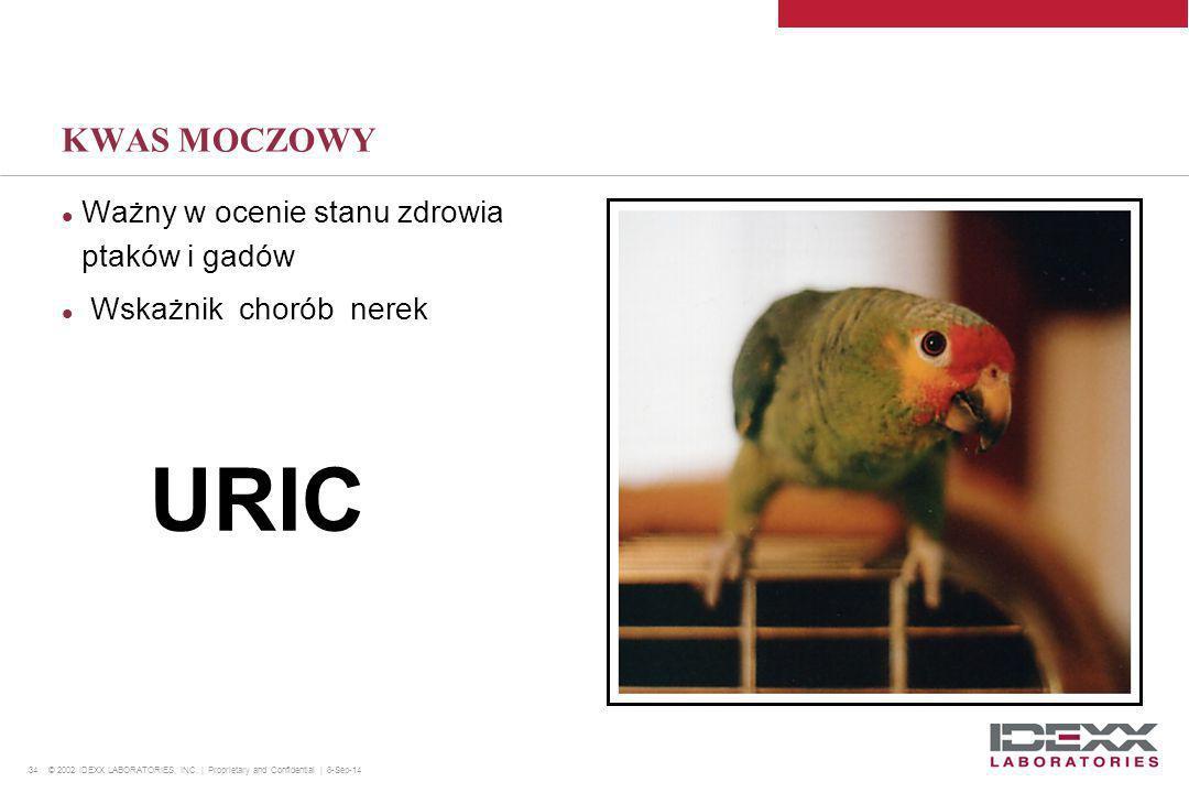 URIC KWAS MOCZOWY Ważny w ocenie stanu zdrowia ptaków i gadów