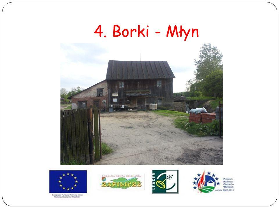 4. Borki - Młyn