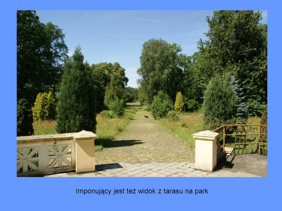 Imponujący jest też widok z tarasu na park