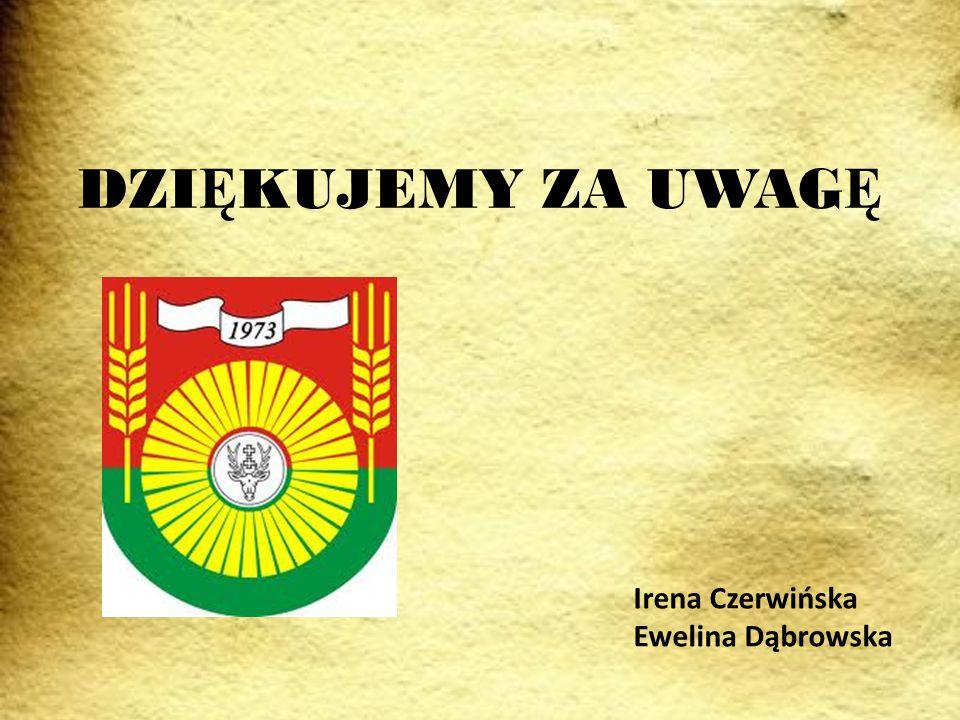 DZIĘKUJEMY ZA UWAGĘ Irena Czerwińska Ewelina Dąbrowska