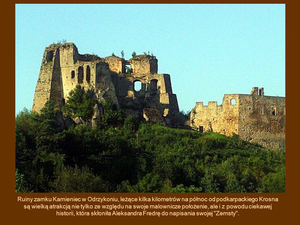 Ruiny zamku Kamieniec w Odrzykoniu, leżące kilka kilometrów na północ od podkarpackiego Krosna są wielką atrakcją nie tylko ze względu na swoje malownicze położenie, ale i z powodu ciekawej historii, która skłoniła Aleksandra Fredrę do napisania swojej Zemsty .