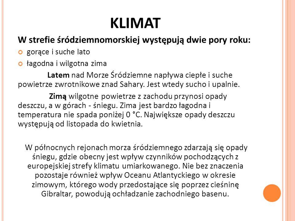 KLIMAT W strefie śródziemnomorskiej występują dwie pory roku: