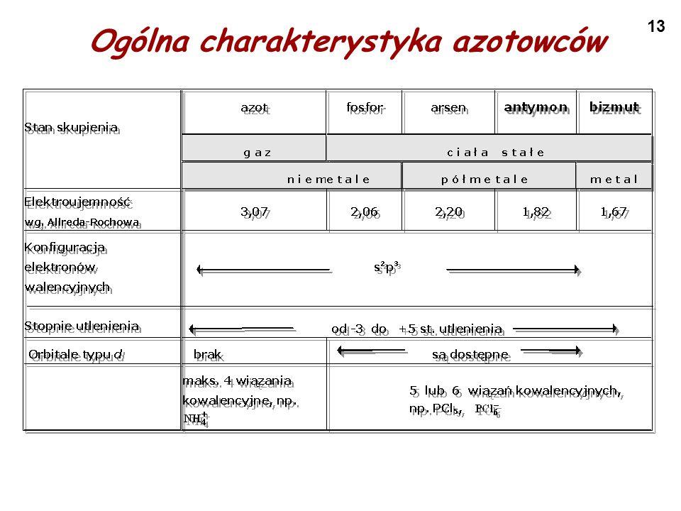Ogólna charakterystyka azotowców