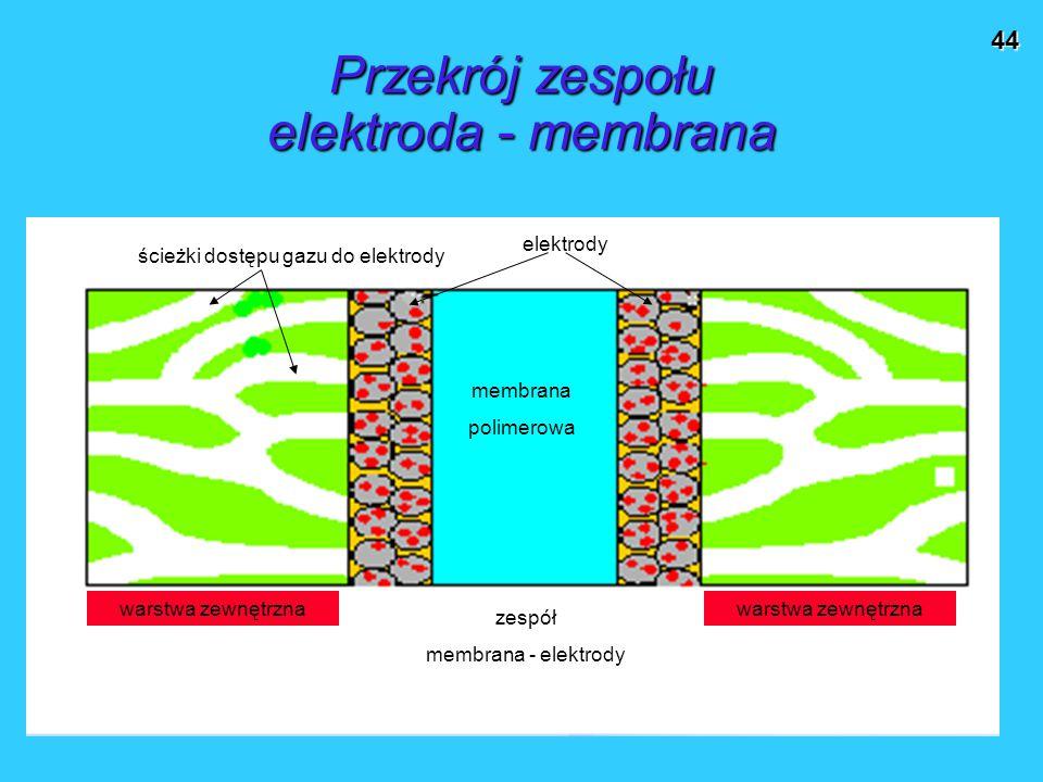 Przekrój zespołu elektroda - membrana