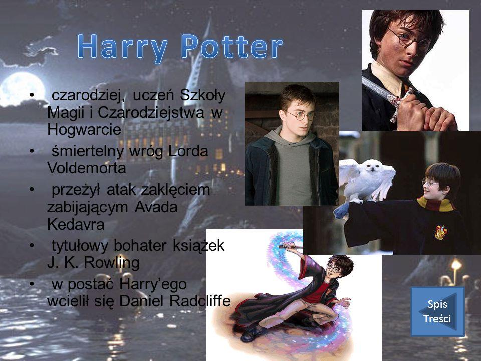 Harry Potter czarodziej, uczeń Szkoły Magii i Czarodziejstwa w Hogwarcie. śmiertelny wróg Lorda Voldemorta.