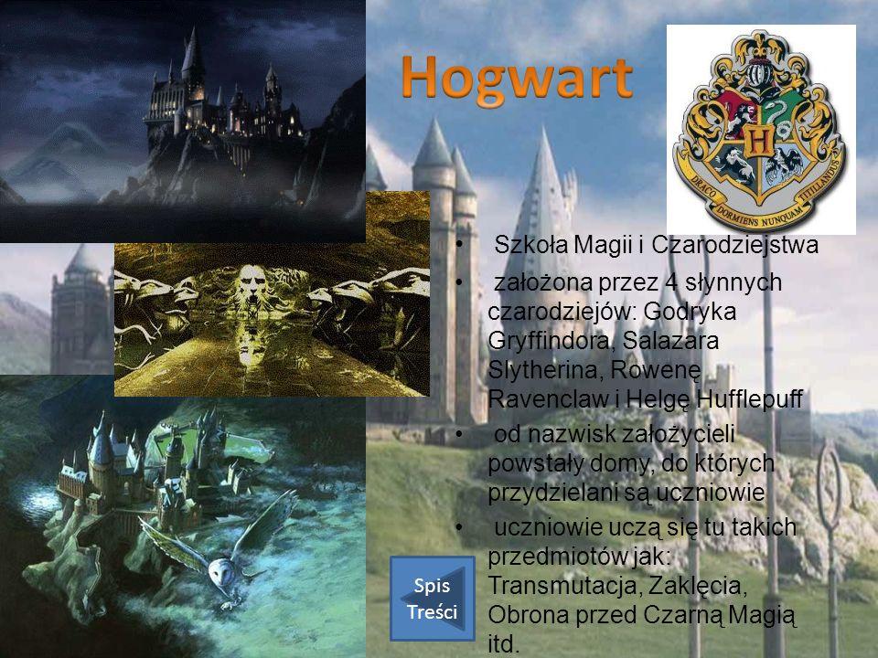 Hogwart Szkoła Magii i Czarodziejstwa