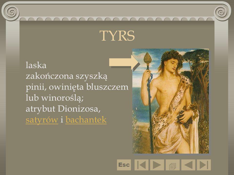 TYRS laska zakończona szyszką pinii, owinięta bluszczem lub winoroślą; atrybut Dionizosa, satyrów i bachantek.