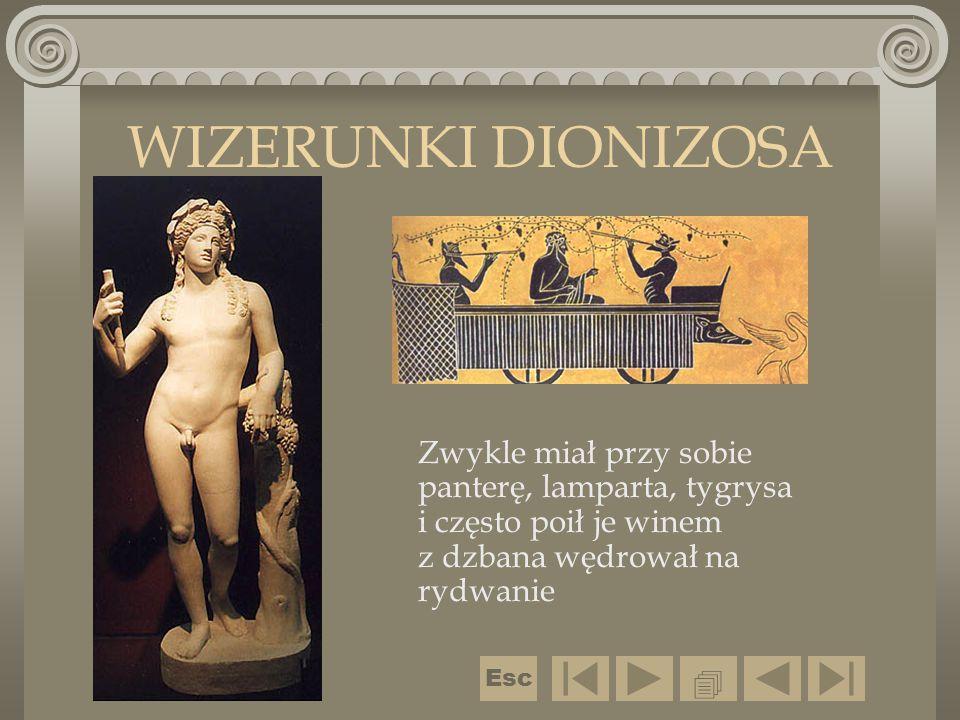 WIZERUNKI DIONIZOSA Zwykle miał przy sobie panterę, lamparta, tygrysa i często poił je winem z dzbana wędrował na rydwanie.