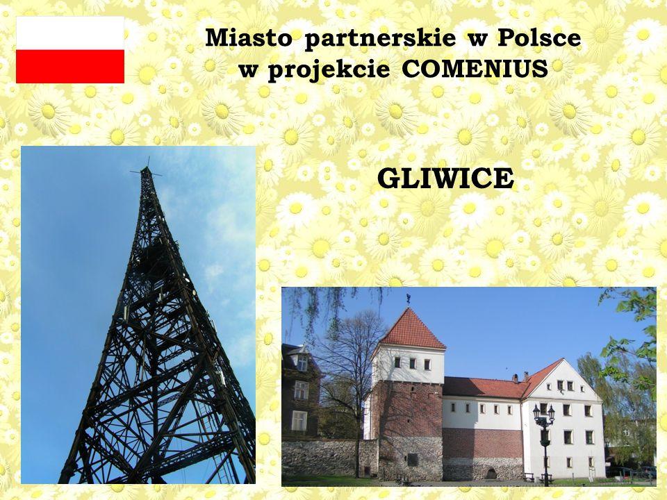 Miasto partnerskie w Polsce w projekcie COMENIUS