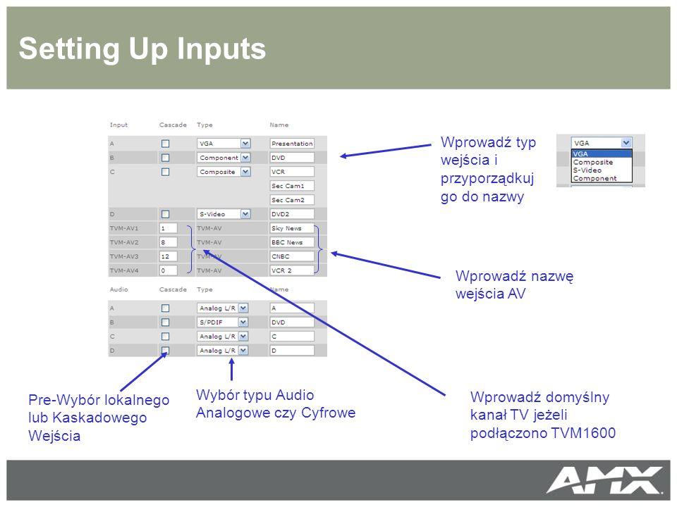 Setting Up Inputs Wprowadź typ wejścia i przyporządkuj go do nazwy