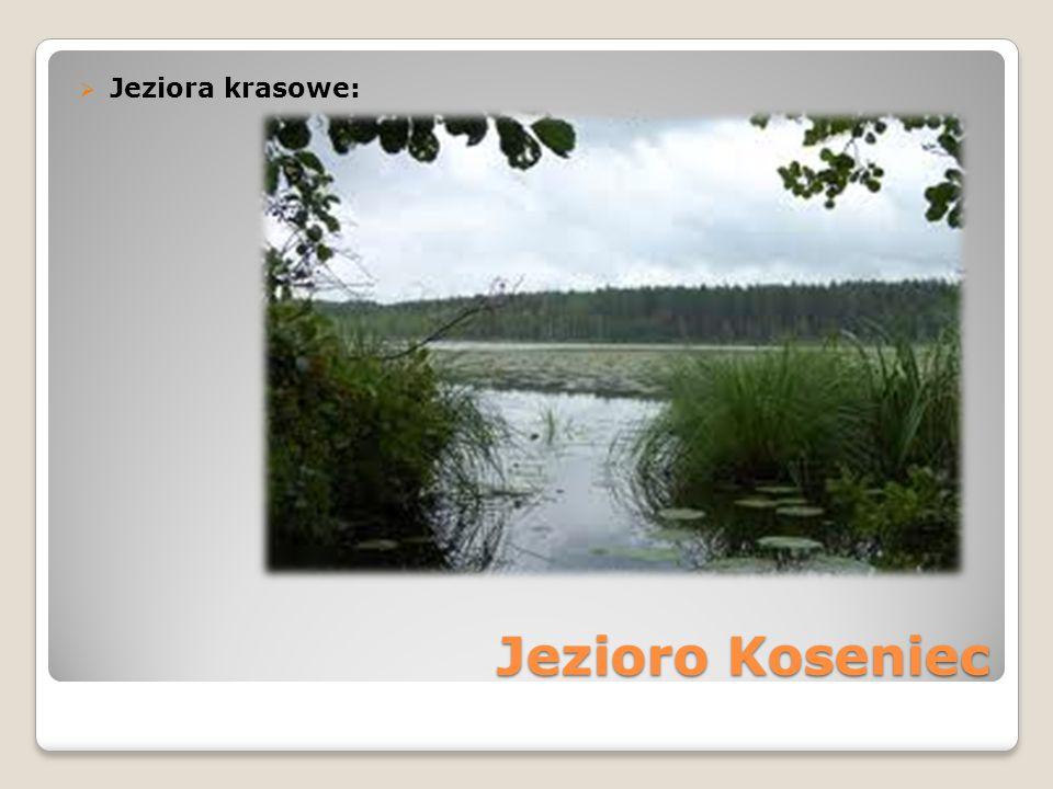 Jeziora krasowe: Jezioro Koseniec