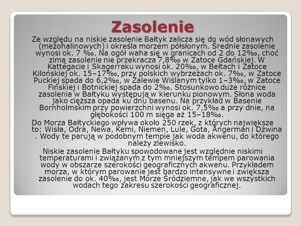 Zasolenie
