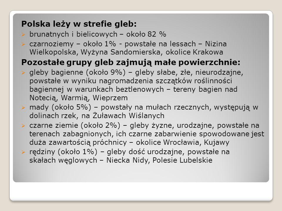 Polska leży w strefie gleb: