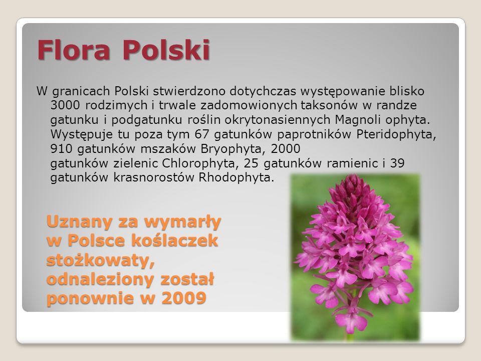 Flora Polski