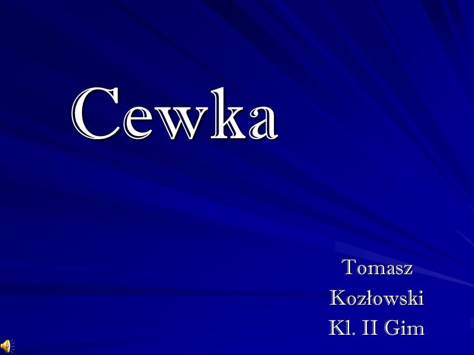 Tomasz Kozłowski Kl. II Gim