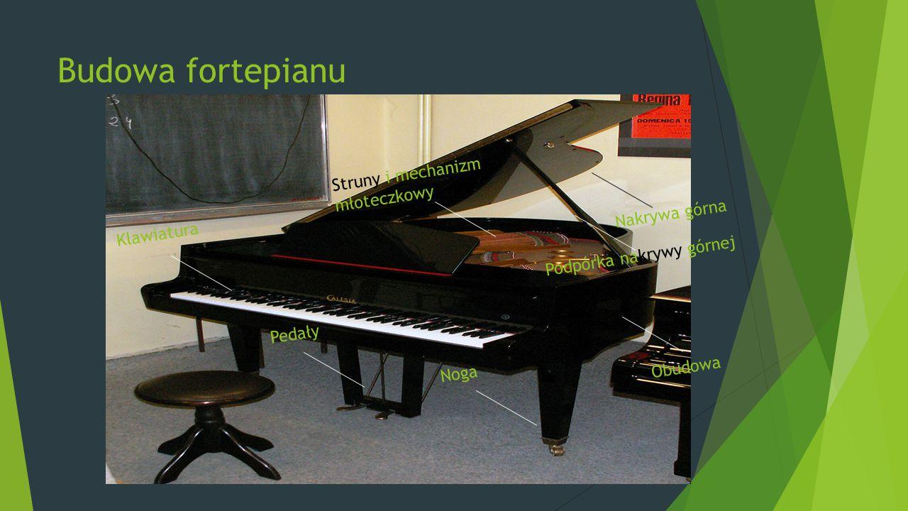 Budowa fortepianu Struny i mechanizm młoteczkowy Nakrywa górna