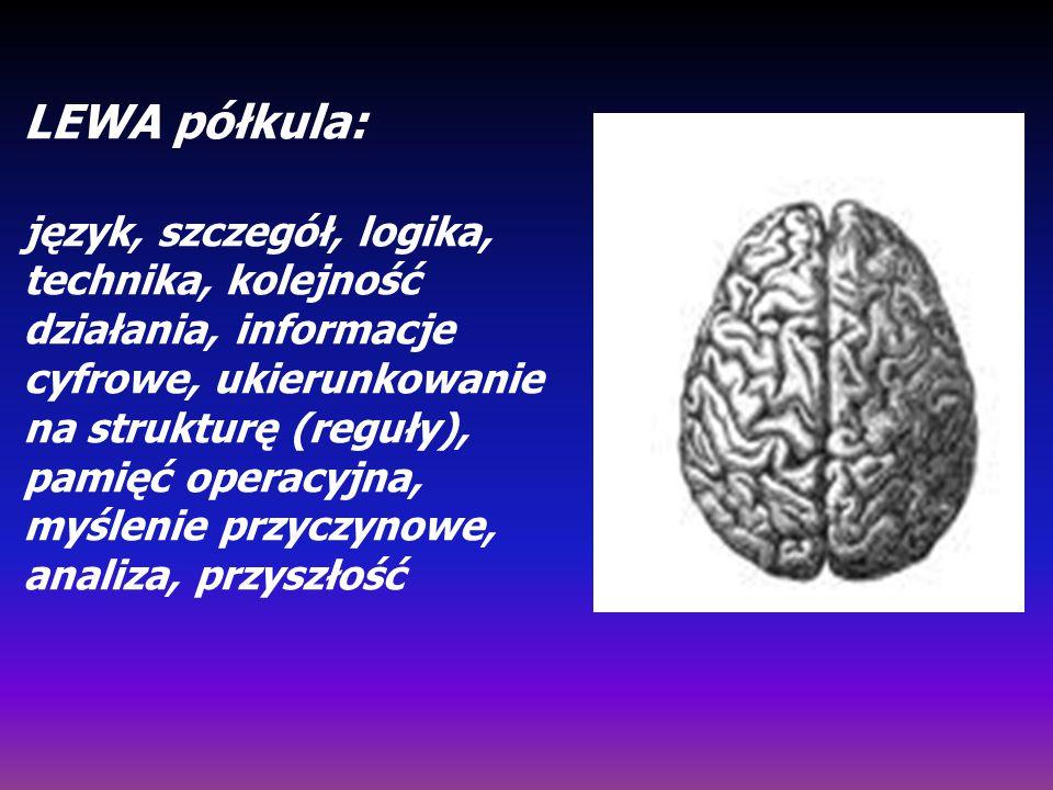 LEWA półkula: język, szczegół, logika, technika, kolejność działania, informacje cyfrowe, ukierunkowanie na strukturę (reguły), pamięć operacyjna, myślenie przyczynowe, analiza, przyszłość
