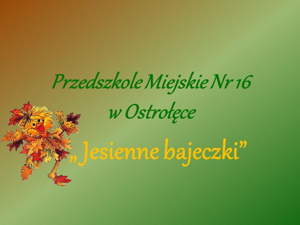 Przedszkole Miejskie Nr 16 w Ostrołęce