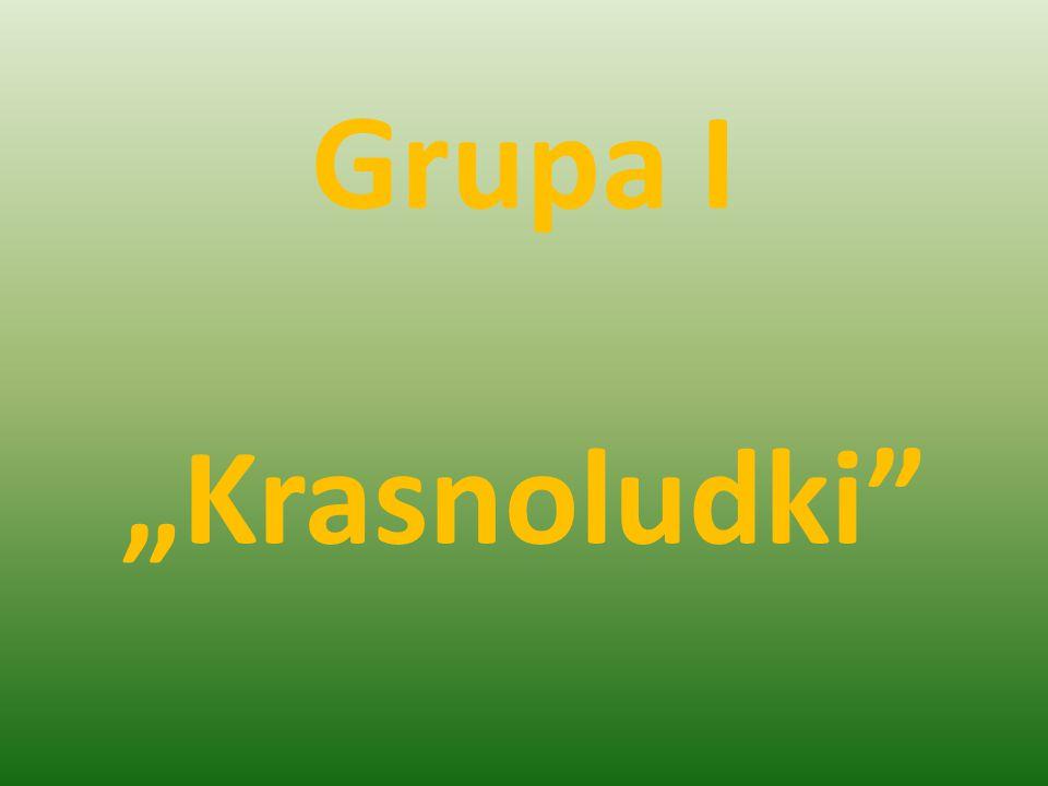 """Grupa I """"Krasnoludki"""