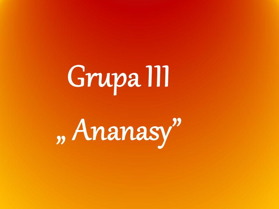 """Grupa III """" Ananasy"""
