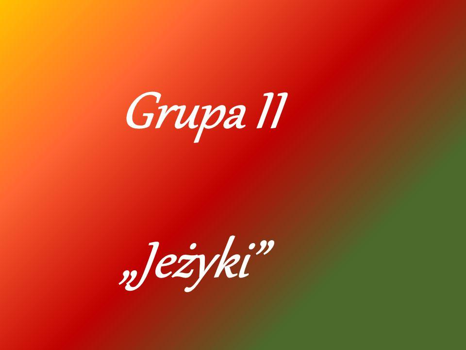 """Grupa II """"Jeżyki"""