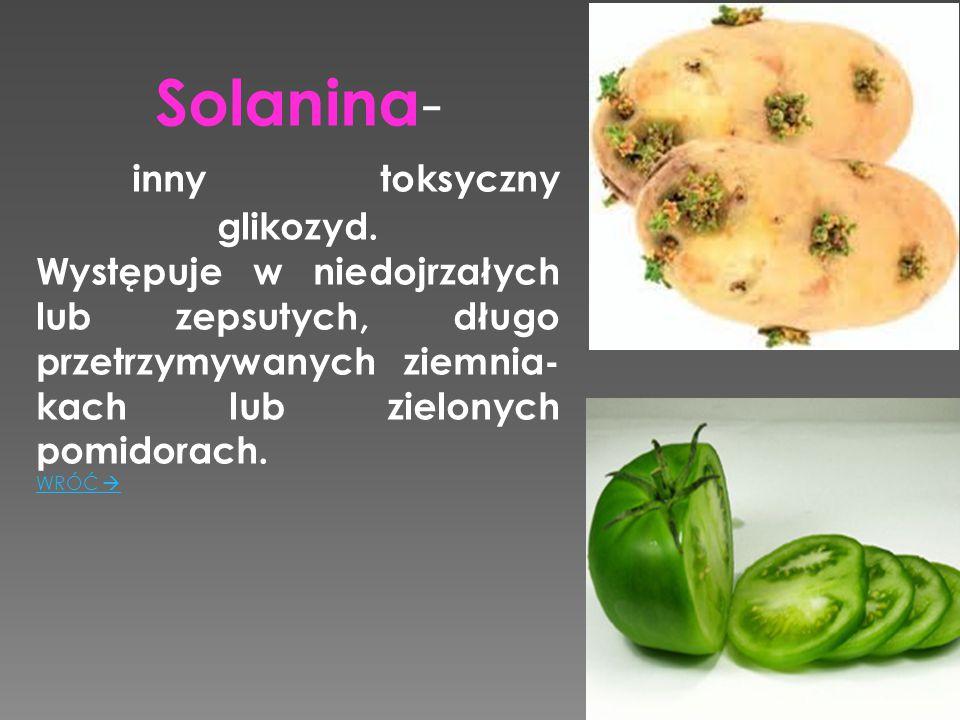 Solanina-. inny toksyczny glikozyd