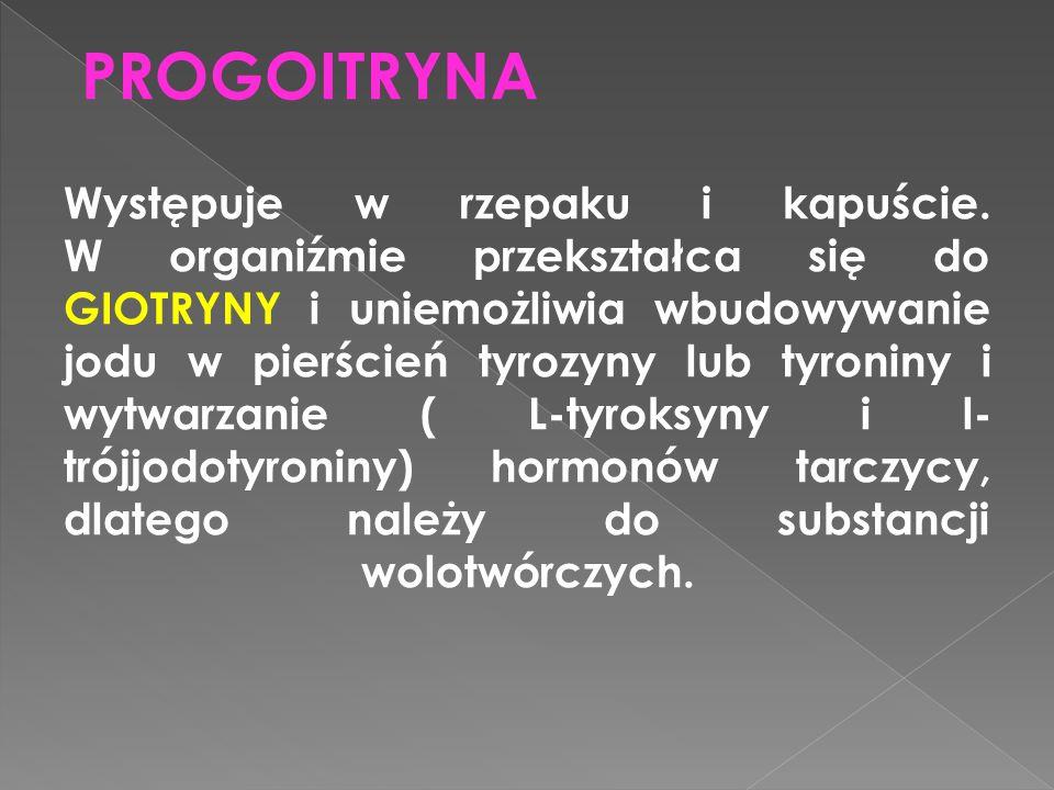 PROGOITRYNA
