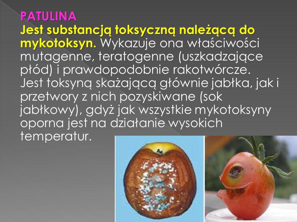 PATULINA Jest substancją toksyczną należącą do mykotoksyn