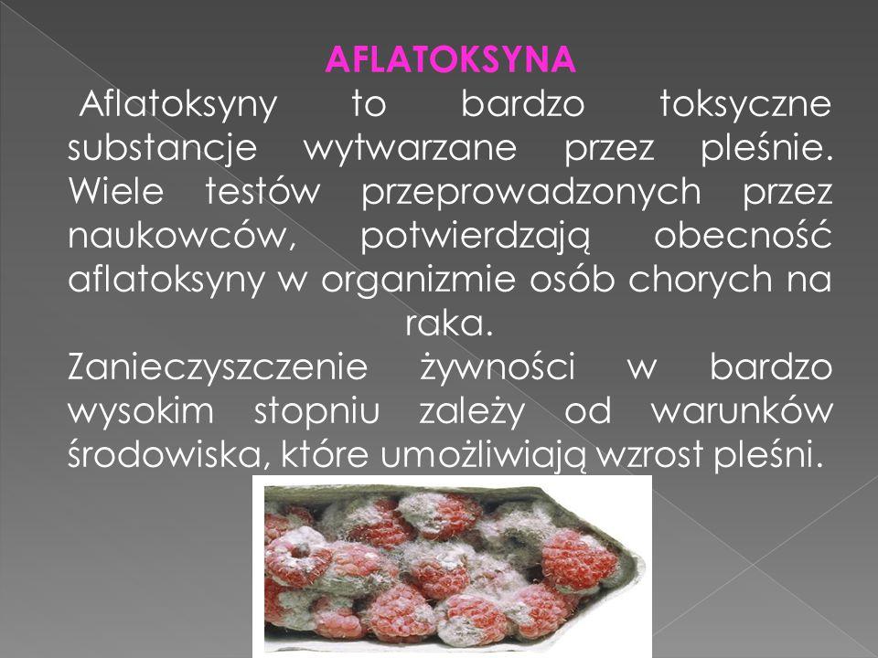 AFLATOKSYNA Aflatoksyny to bardzo toksyczne substancje wytwarzane przez pleśnie.
