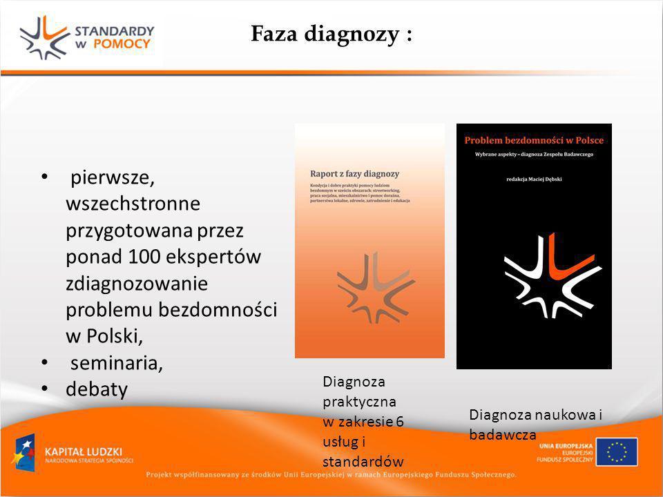 Faza diagnozy : pierwsze, wszechstronne przygotowana przez ponad 100 ekspertów zdiagnozowanie problemu bezdomności w Polski,