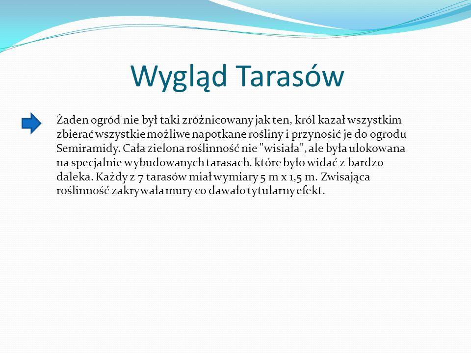 Wygląd Tarasów