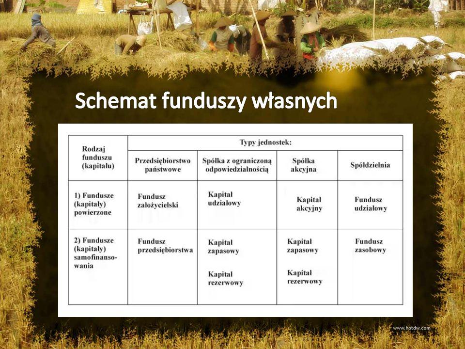 Schemat funduszy własnych