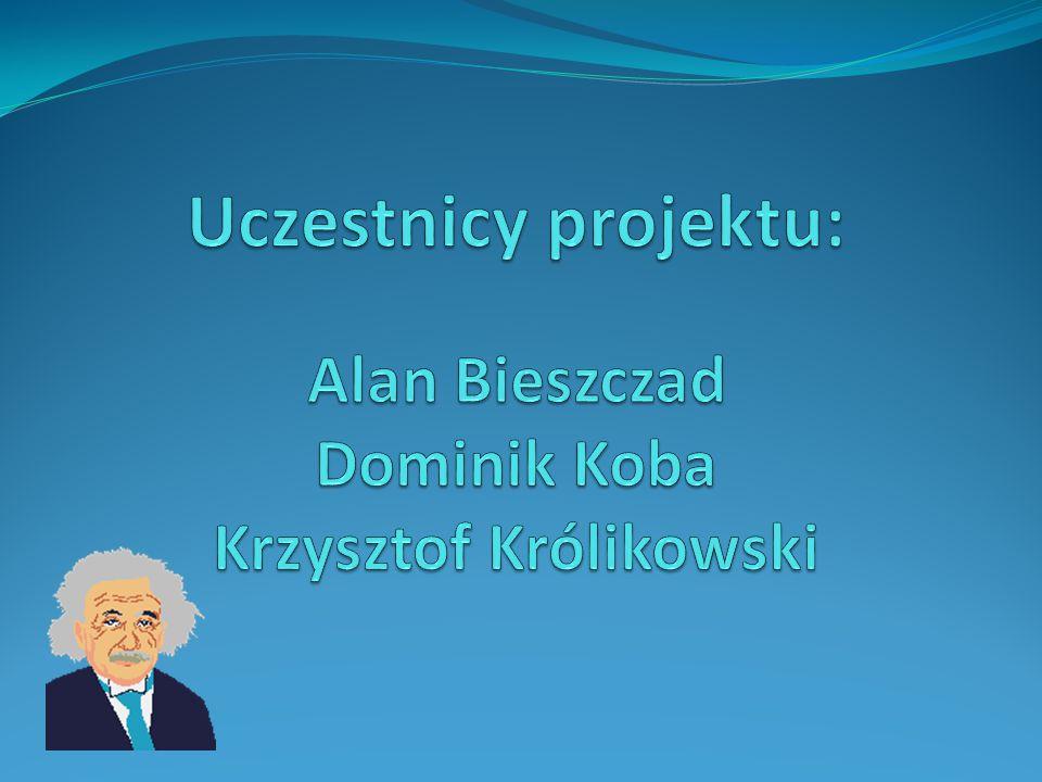 Uczestnicy projektu: Alan Bieszczad Dominik Koba Krzysztof Królikowski