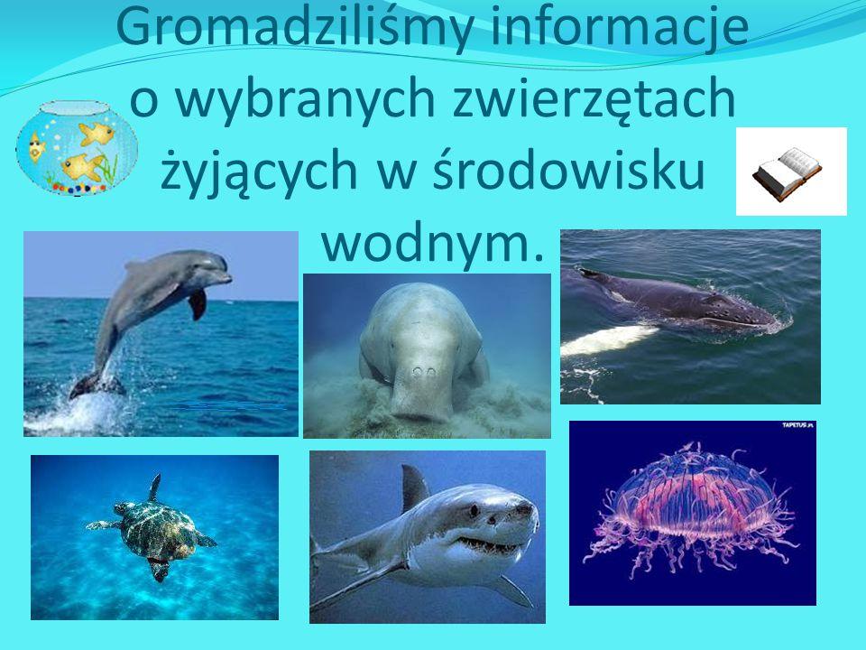 Gromadziliśmy informacje o wybranych zwierzętach żyjących w środowisku wodnym.