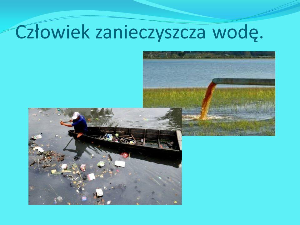 Człowiek zanieczyszcza wodę.
