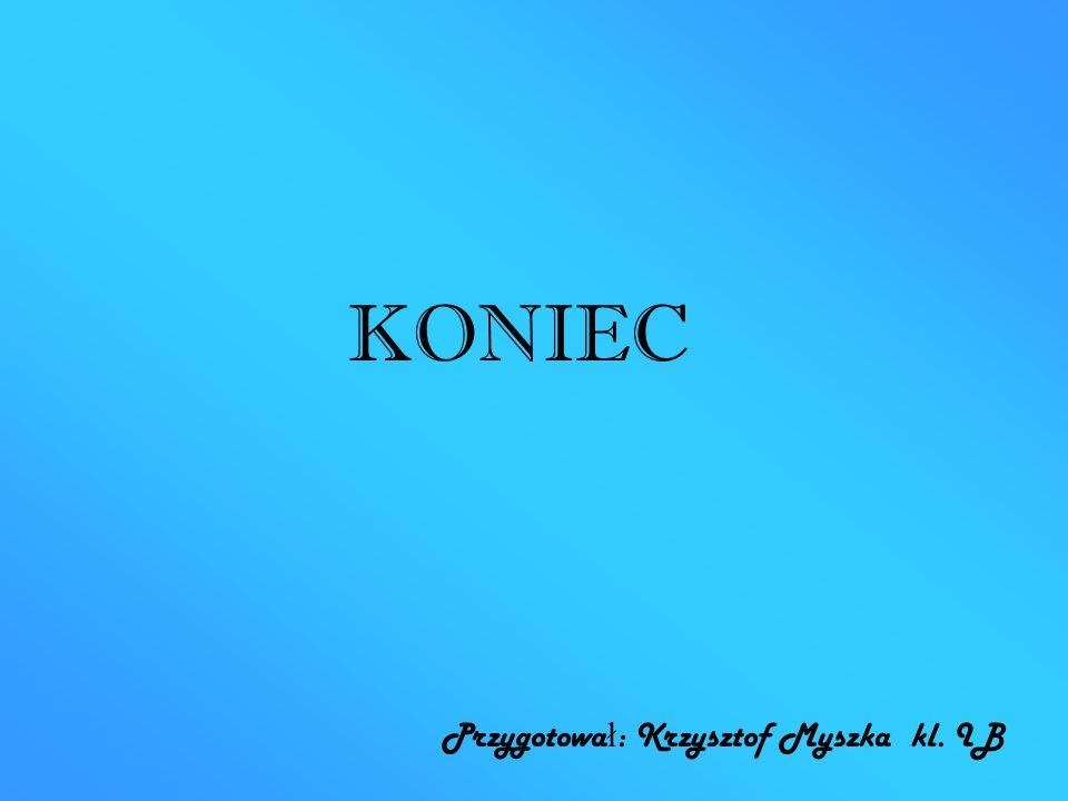 KONIEC Przygotował: Krzysztof Myszka kl. IB