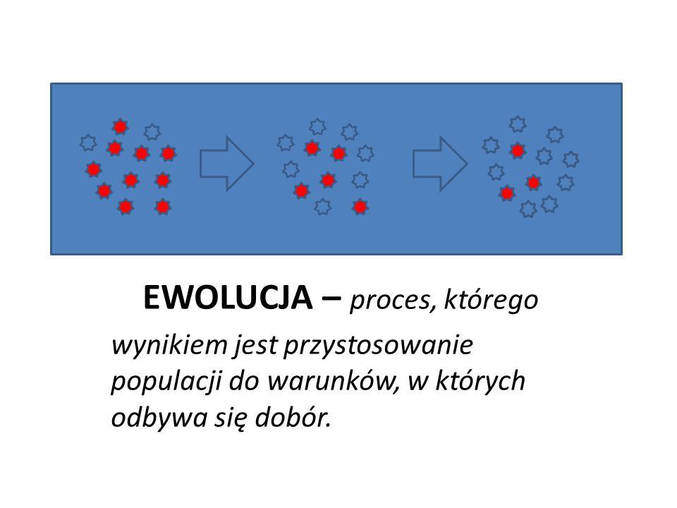 EWOLUCJA – proces, którego