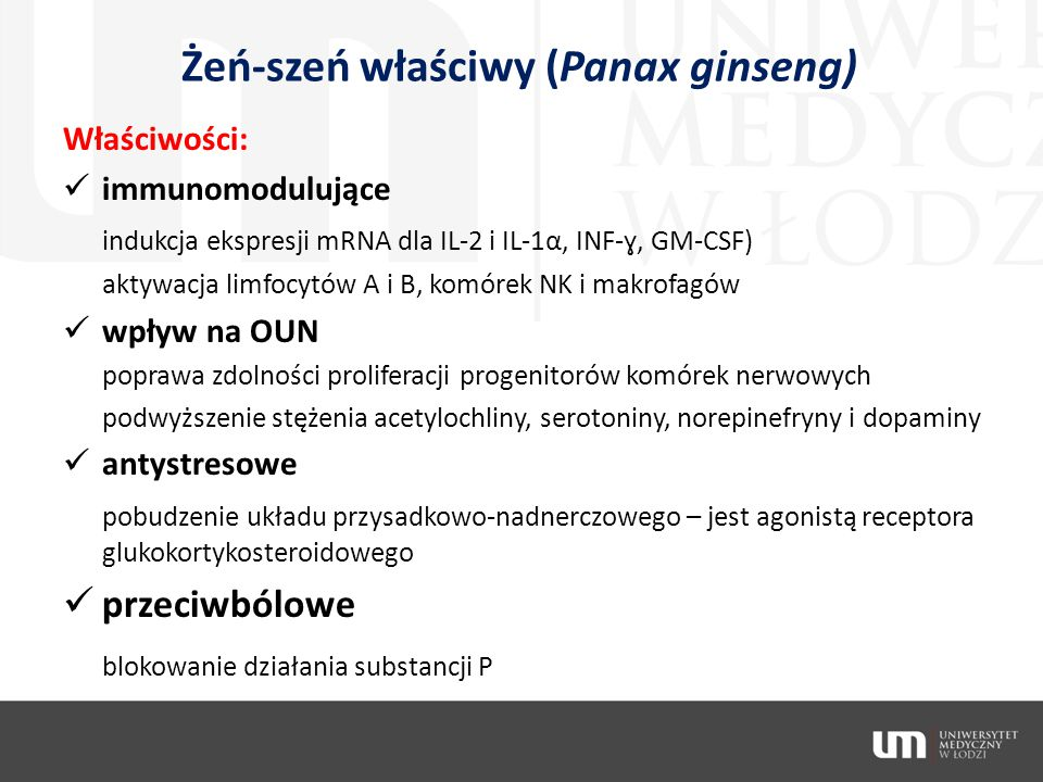 Żeń-szeń właściwy (Panax ginseng)