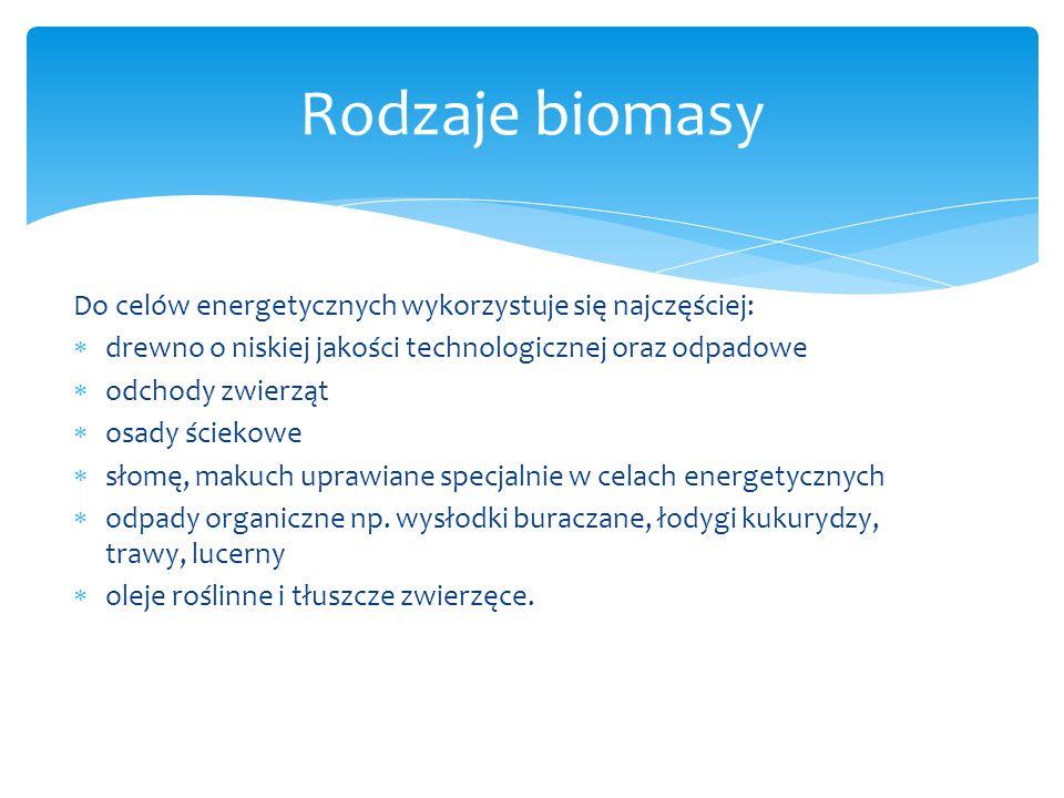 Rodzaje biomasy Do celów energetycznych wykorzystuje się najczęściej: