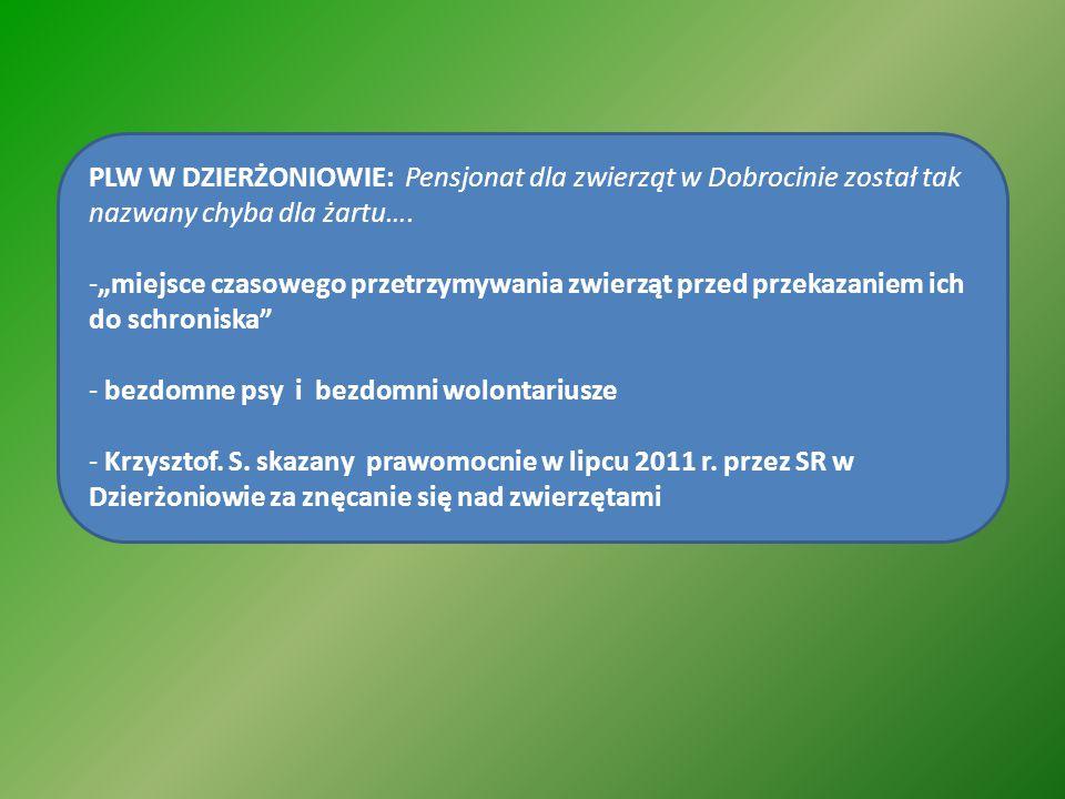 PLW W DZIERŻONIOWIE: Pensjonat dla zwierząt w Dobrocinie został tak nazwany chyba dla żartu….