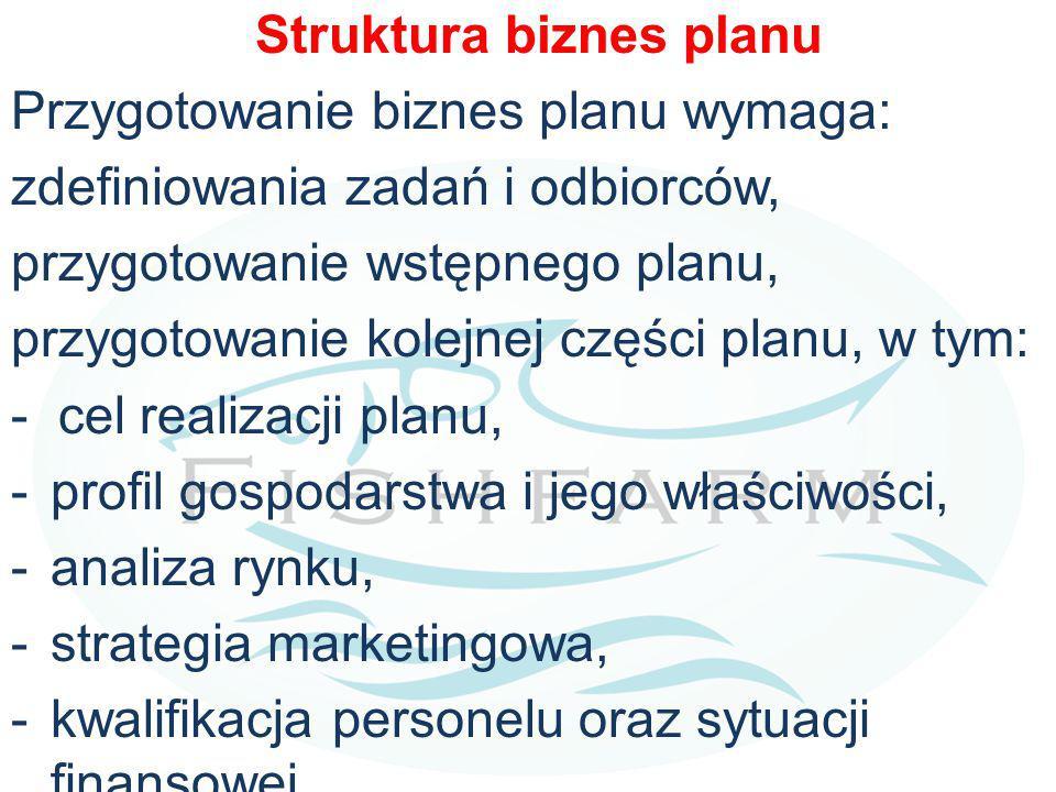 Struktura biznes planu