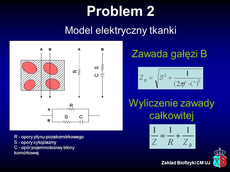 Problem 2 Model elektryczny tkanki Zawada gałęzi B Wyliczenie zawady