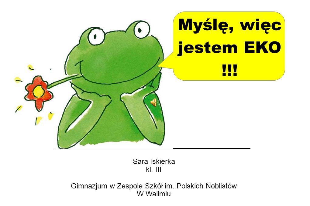 Gimnazjum w Zespole Szkół im. Polskich Noblistów