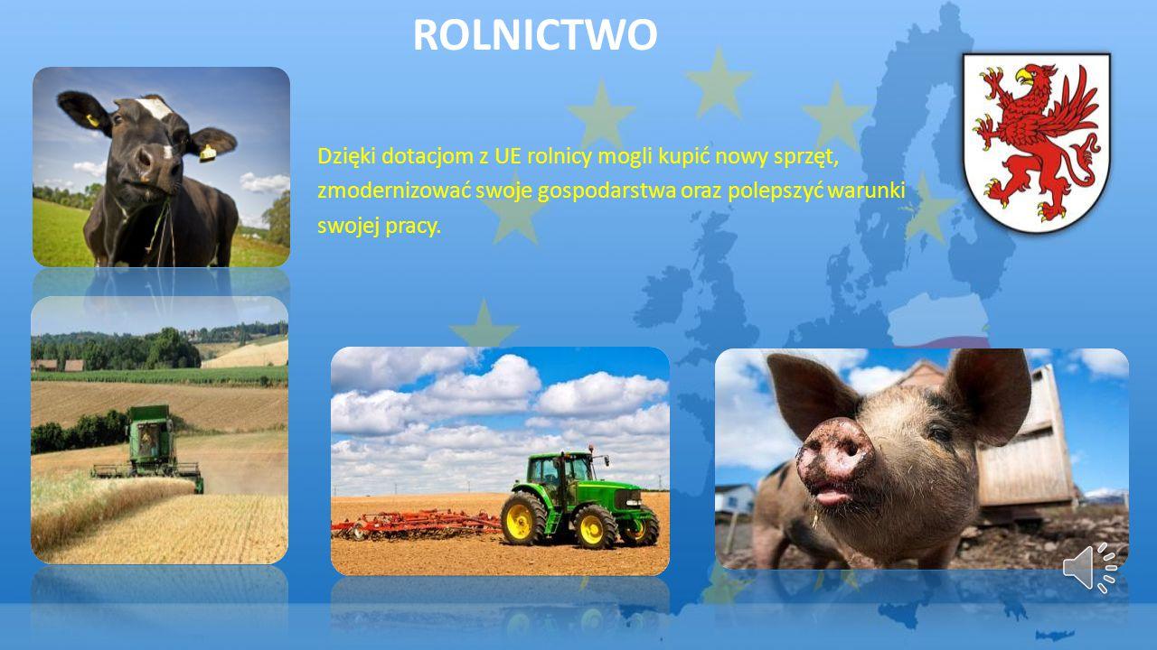 Rolnictwo Dzięki dotacjom z UE rolnicy mogli kupić nowy sprzęt,