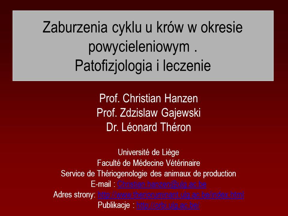 Prof. Zdzislaw Gajewski