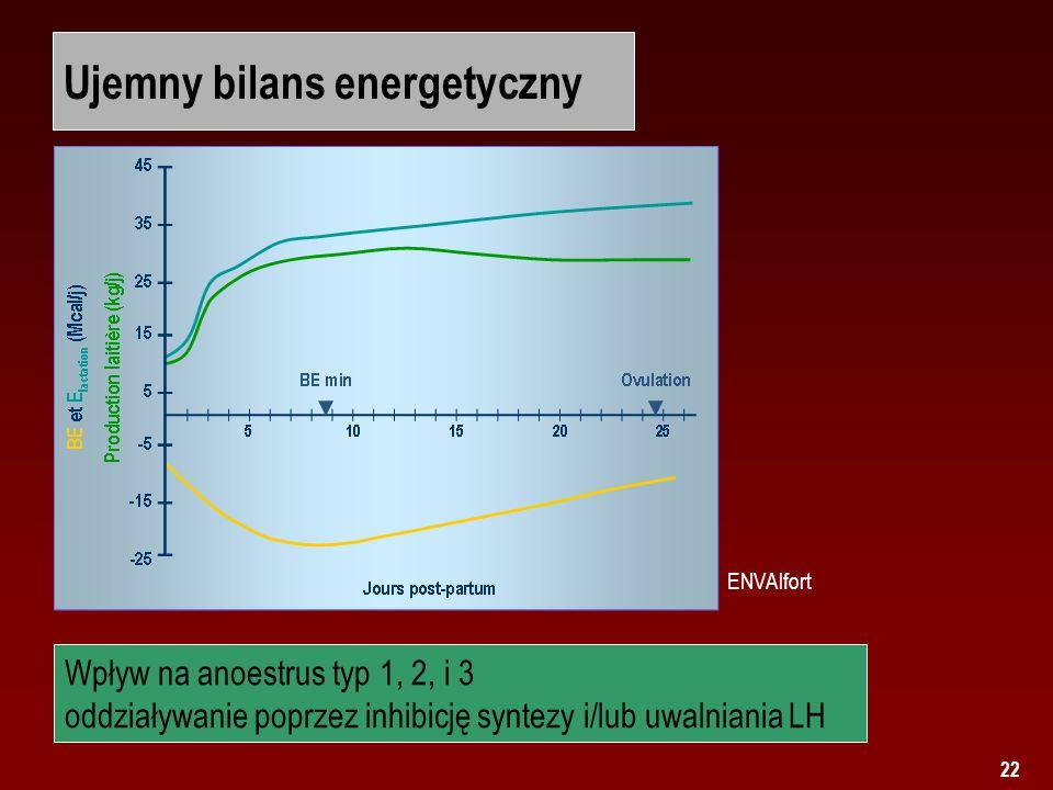 Ujemny bilans energetyczny
